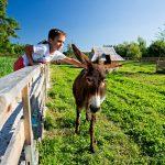 Slovenia-Eco-Resort-zivalski-vrt-10